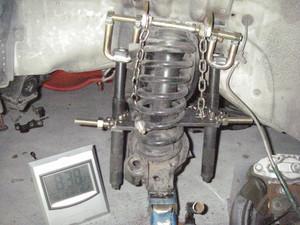Simgp2543